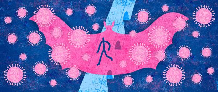 Звідки взявся новий коронавірус? Потенційне джерело кажан, змія або панголін