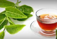 Чай з листя гуави: користь та побічні ефекти